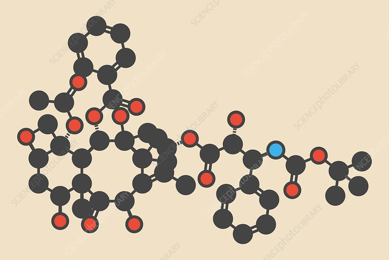 Docetaxel cancer drug molecule