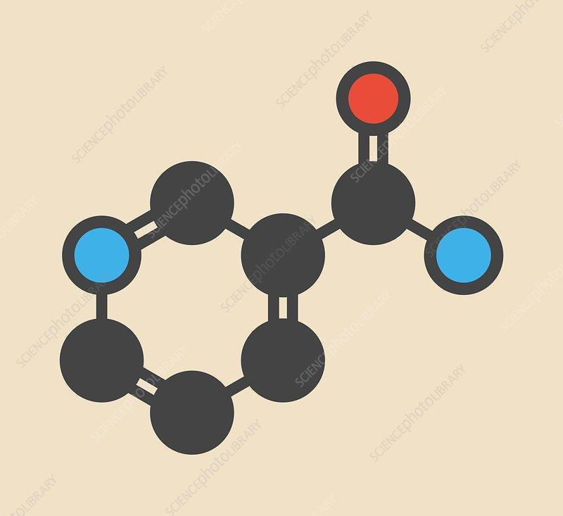 Nicotinamide drug and vitamin molecule