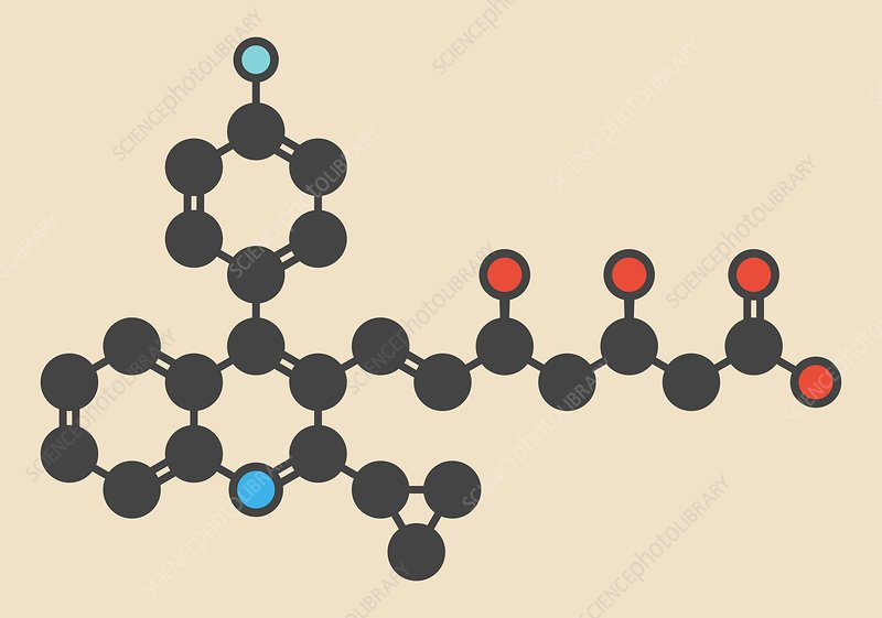 Pitavastatin molecule