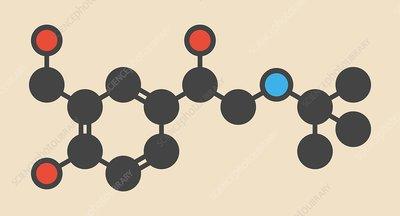 Salbutamol asthma drug molecule