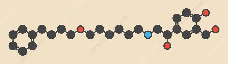 Salmeterol asthma drug molecule