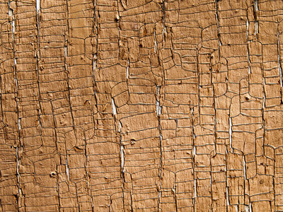 Cracked wooden planks
