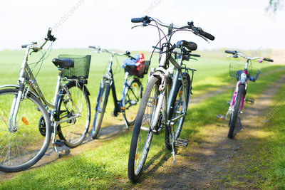 Bicycles on country track