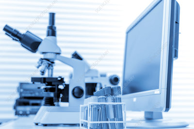 Microscope and computer