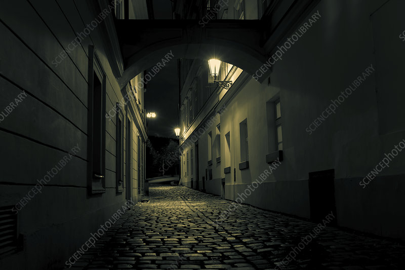 Cobbled street at night