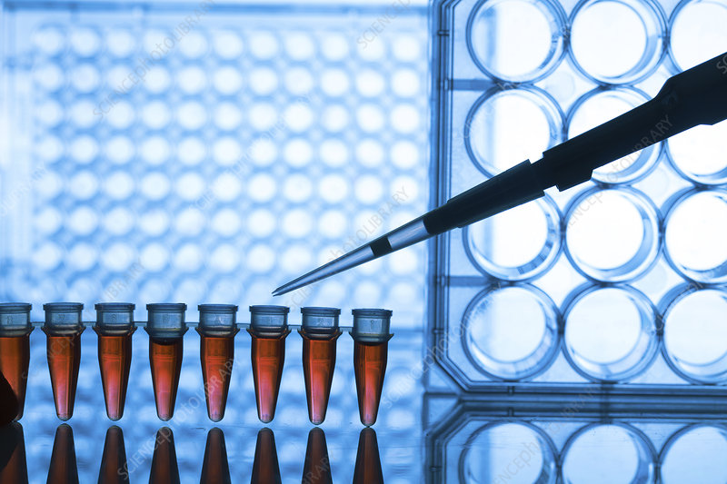 Microtubes and pipette