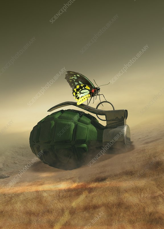 Butterfly on a hand grenade, illustration