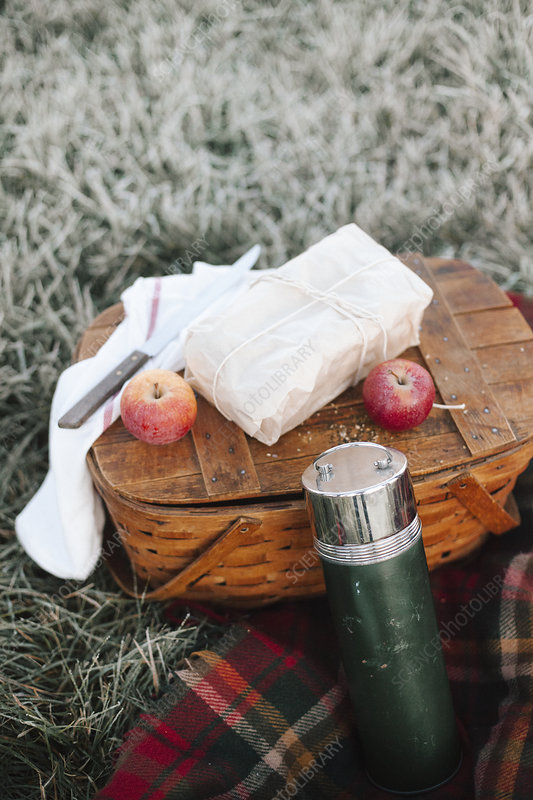 A picnic, apples by a fishing basket