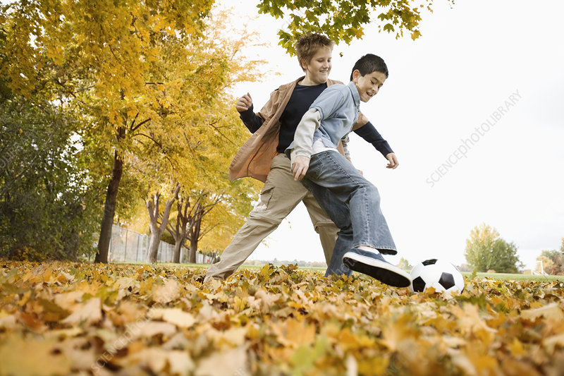 Two boys throwing autumn leaves