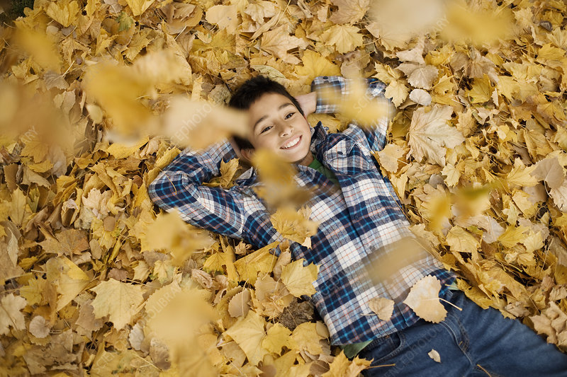 A boy lying on a pile of autumn leaves