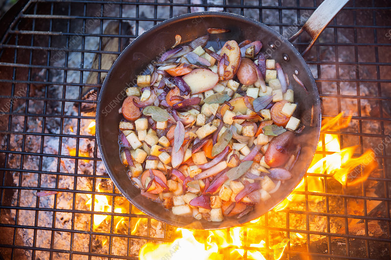 Outdoor cookout and game birds in a pan
