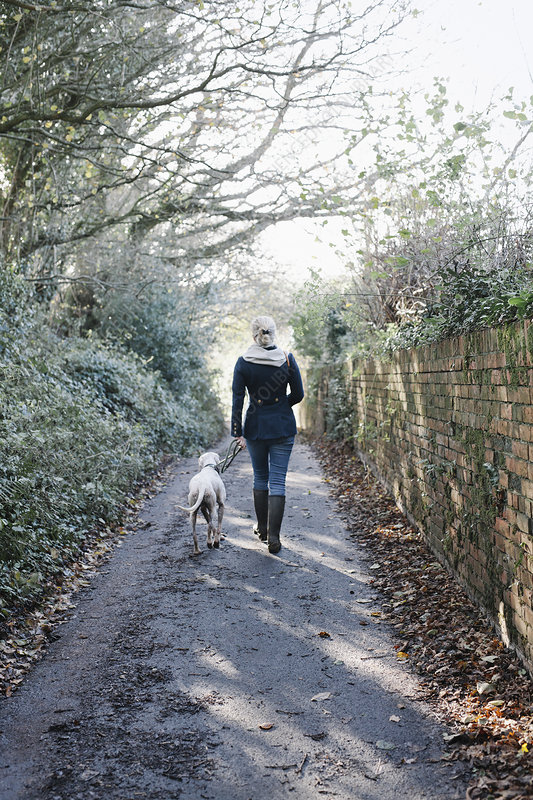 Woman walking with a dog on a lane