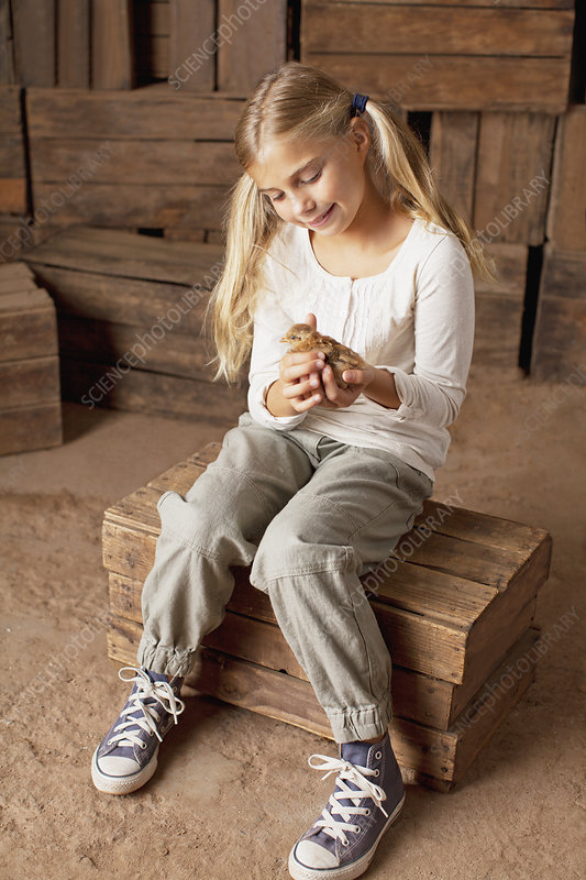 Girl holding chick in barn