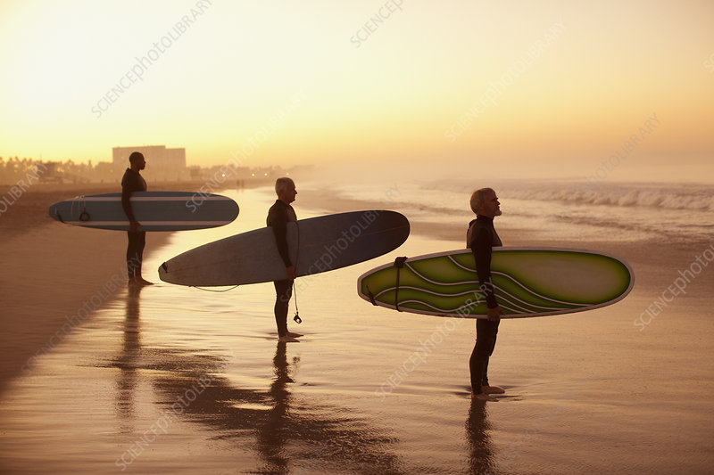 Surfers holding boards on beach