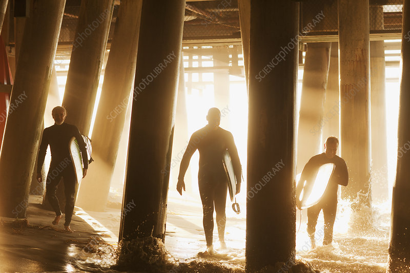 Surfers carrying boards under pier