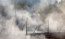 Steam rising from hot spring