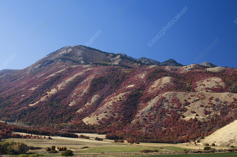 Mountain overlooking rural landscape