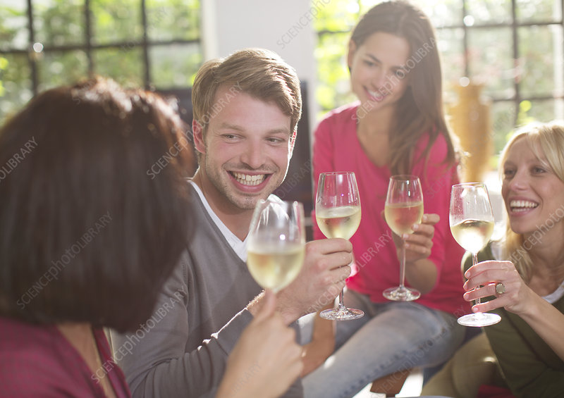 Friends toasting each other with wine