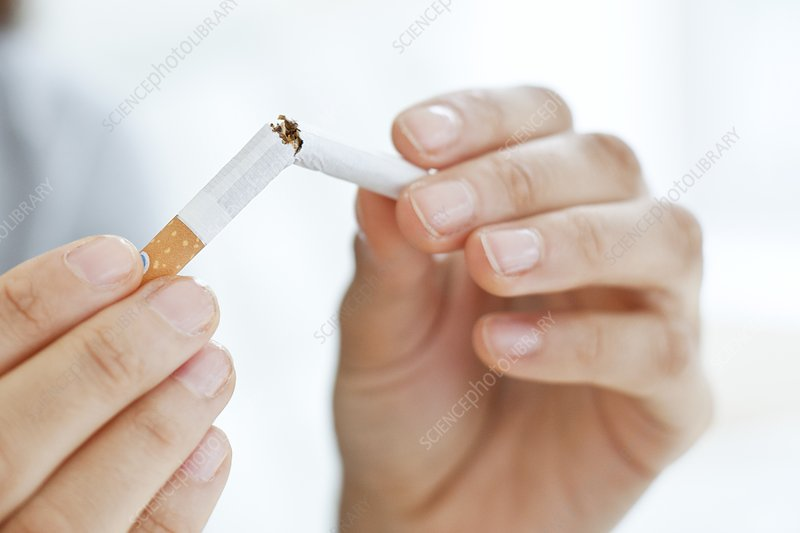 Young woman breaking cigarette in half