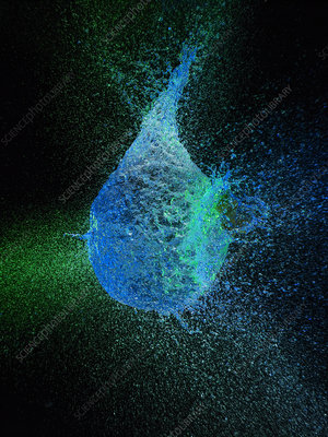 High speed image of water balloon popping