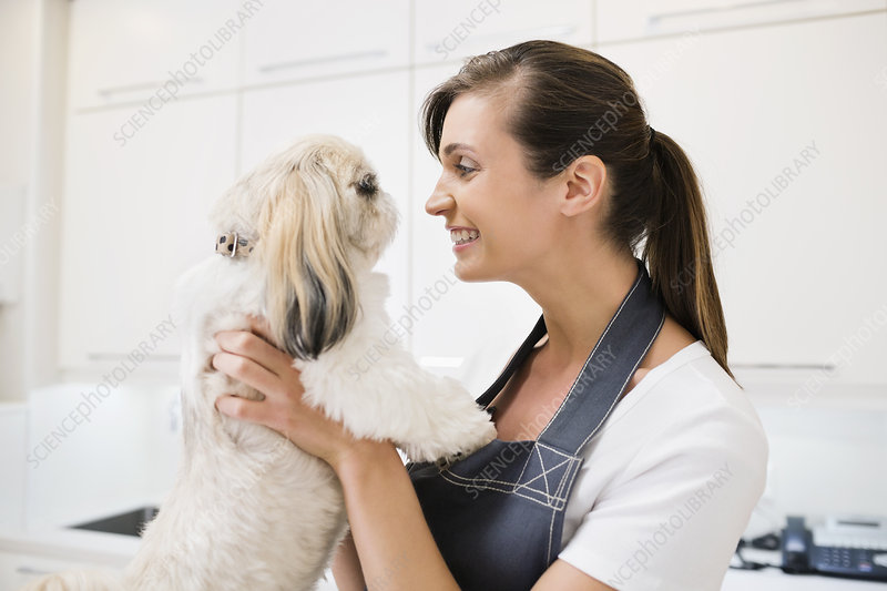 Groomer holding dog in office