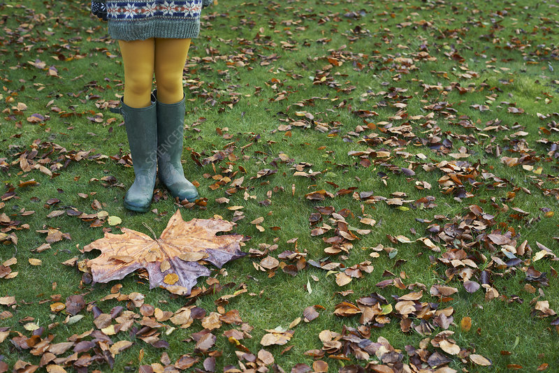 Girl standing by large autumn leaf