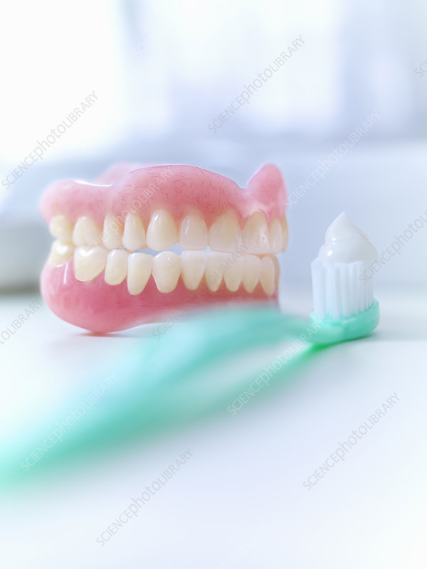 Close up of dentures and toothbrush