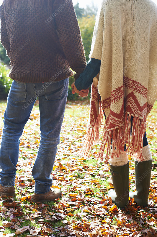 Couple holding hands in autumn leaves