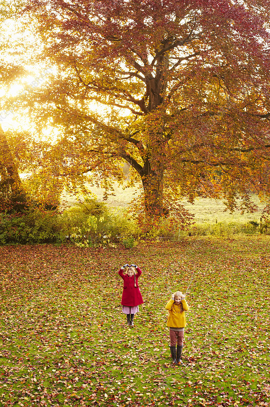 Girls playing in field of autumn leaves