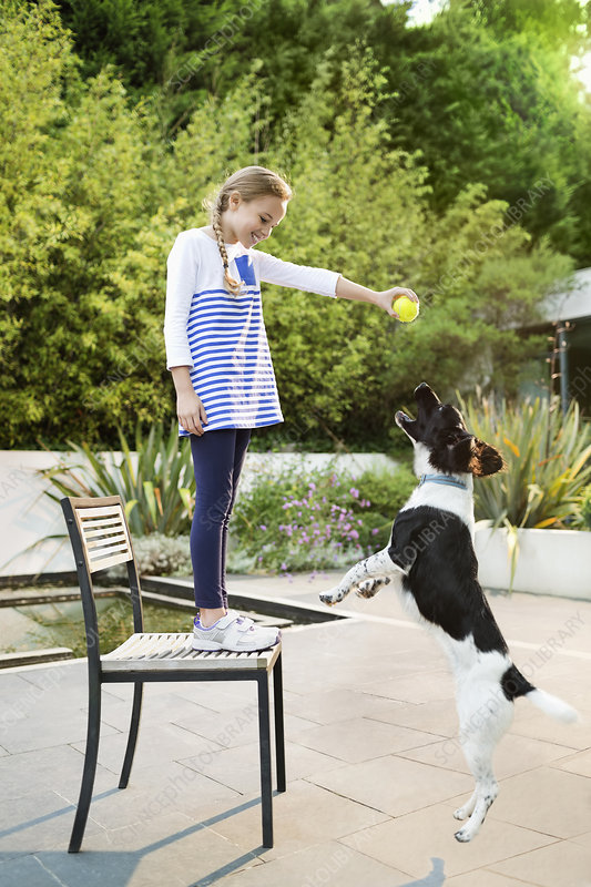 Girl playing with dog outdoors