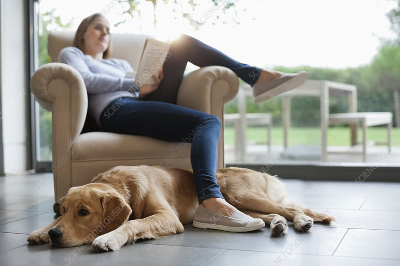 Dog sitting with woman in living room