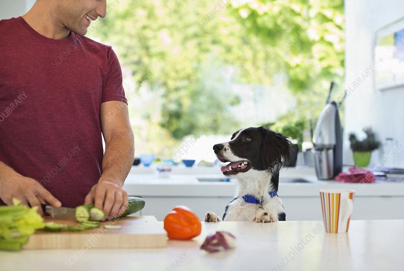 Man cooking with dog in kitchen