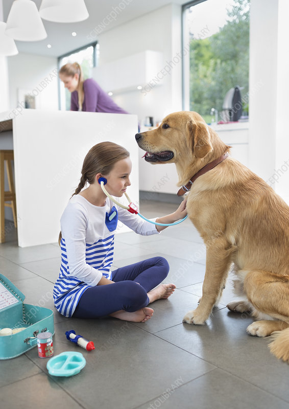 Girl playing doctor with dog in kitchen