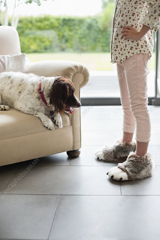 Girl scolding dog in armchair