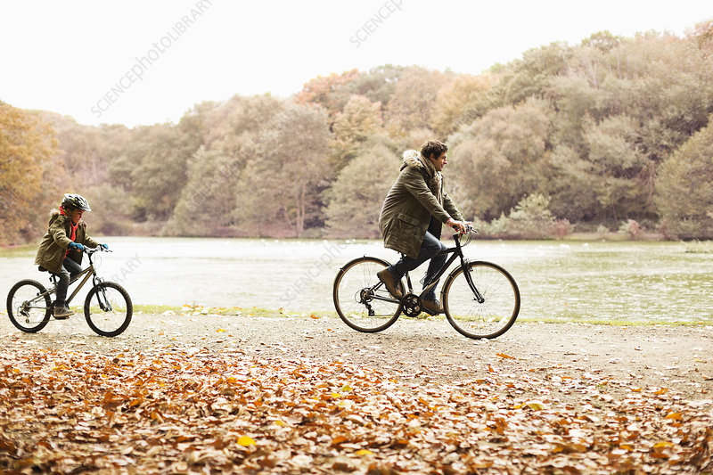 Father and son riding bicycles in park