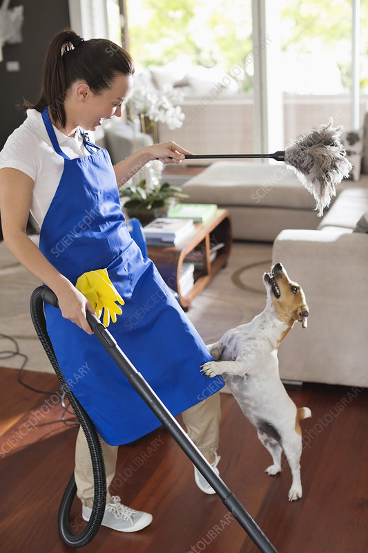 Maid playing with dog in living room