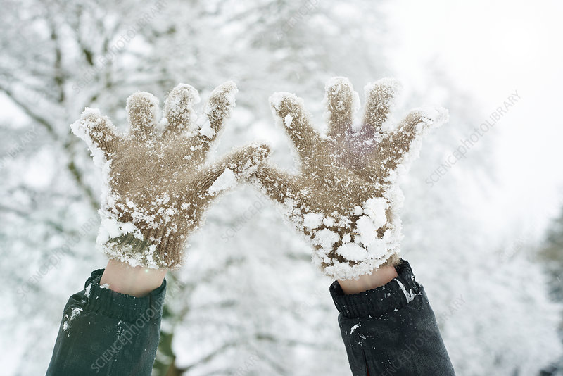 Close up of snowy gloves