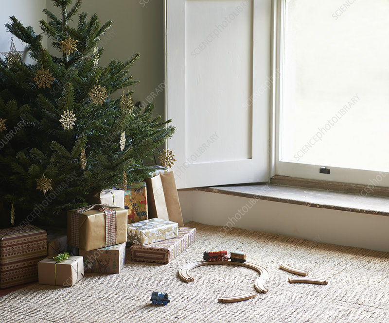 Train set and Christmas gifts under tree