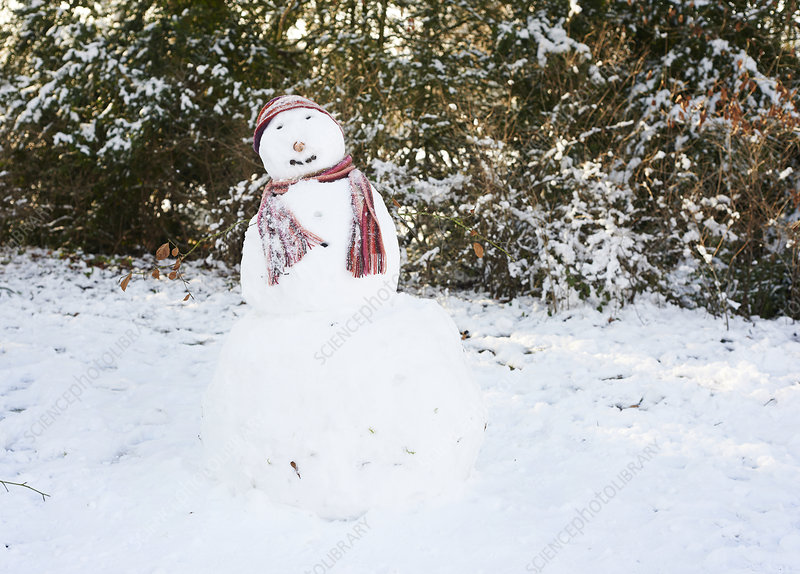 Snowman wearing hat and scarf