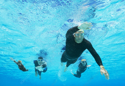 Triathletes in wetsuits underwater