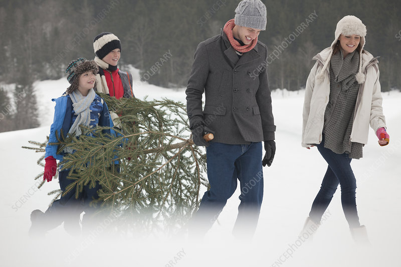 Happy family carrying Christmas tree