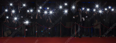 Paparazzi using flash photography