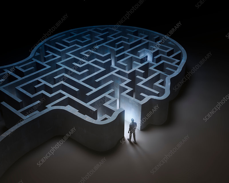 Human head in shape of maze, illustration