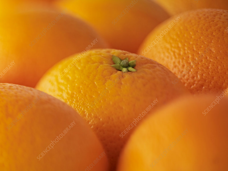 Extreme close up of oranges