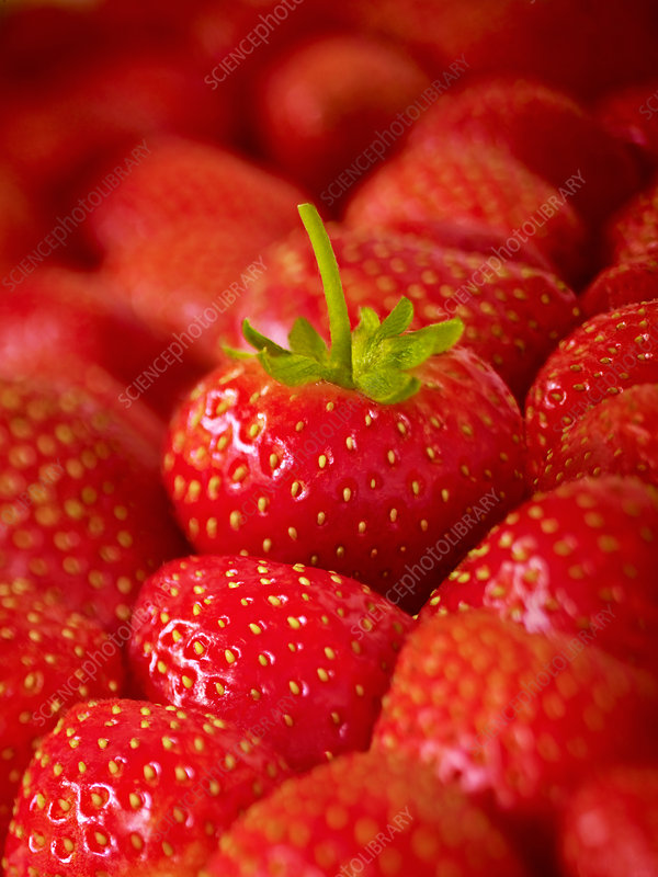 Extreme close up of ripe strawberries
