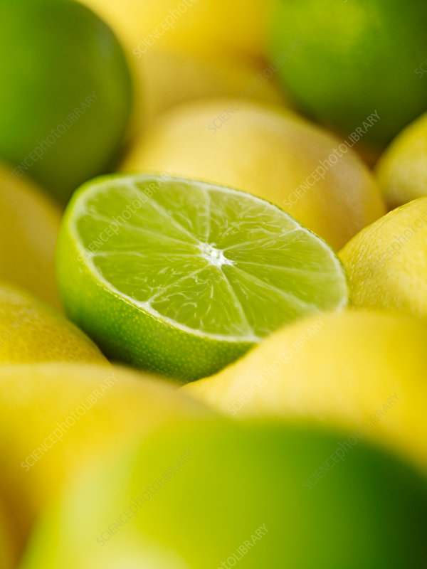 Close up of sliced lime among lemons