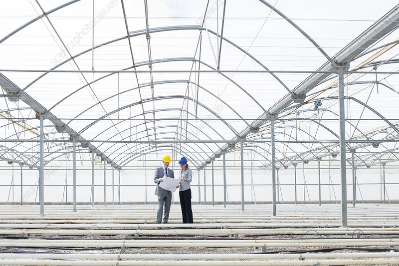 Architect and businesswoman in greenhouse