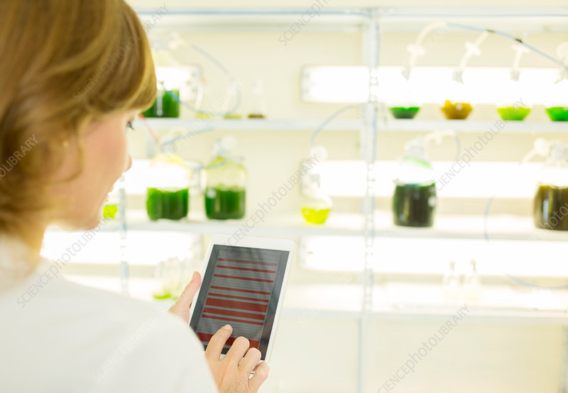 Scientist using tablet in laboratory