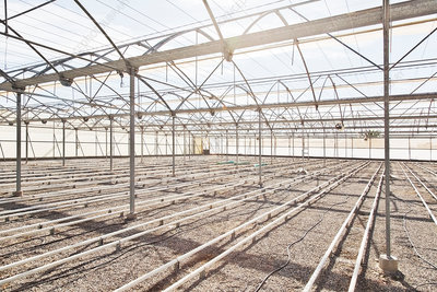 Irrigation pipes in empty greenhouse