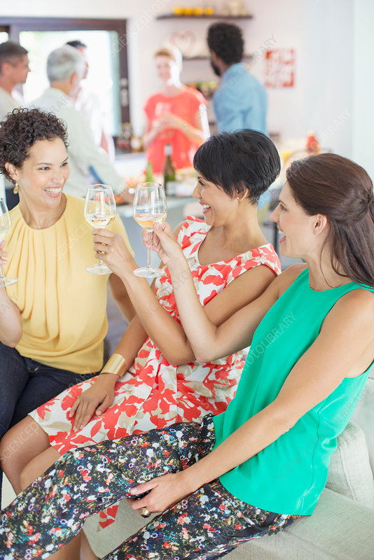 Women toasting each other at party